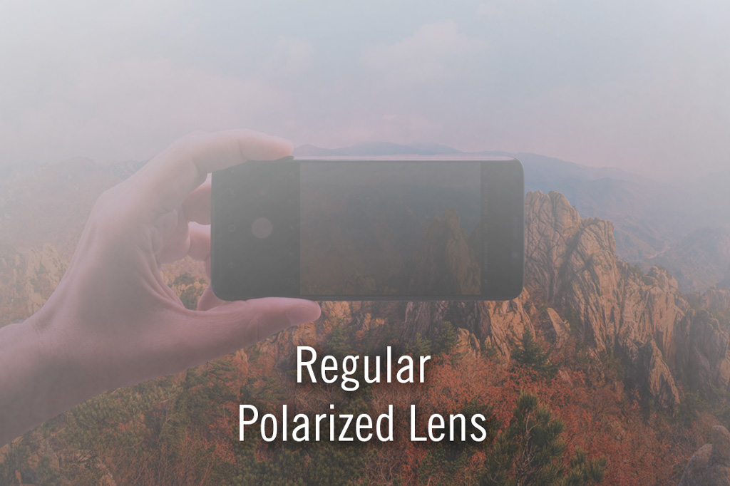 Trail - Polarized for Devices antiFOG Grey